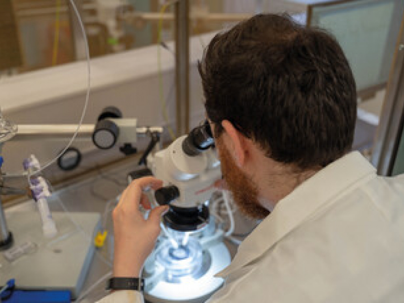 Pharmacology and Translational Neuroscience Research